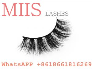 false lashes extension